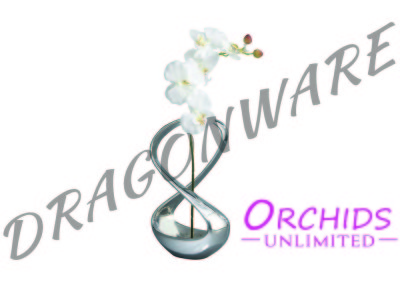 Orchids Unlimited Infinity Front
