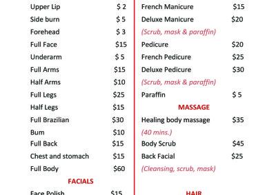 Pro Beauty Spa-Flyer-Back